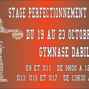 Stage Perfectionnement Basket